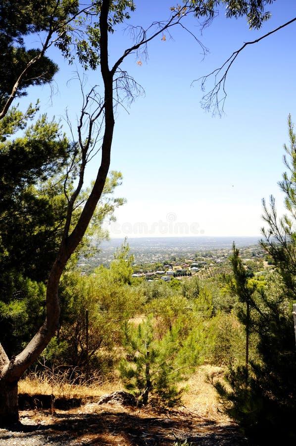 Vistas que negligenciam a cidade de Adelaide quadro por árvores e pelo bushland australiano imagens de stock