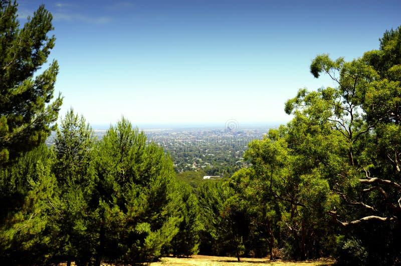 Vistas que negligenciam a cidade de Adelaide quadro por árvores e pelo bushland australiano fotos de stock royalty free