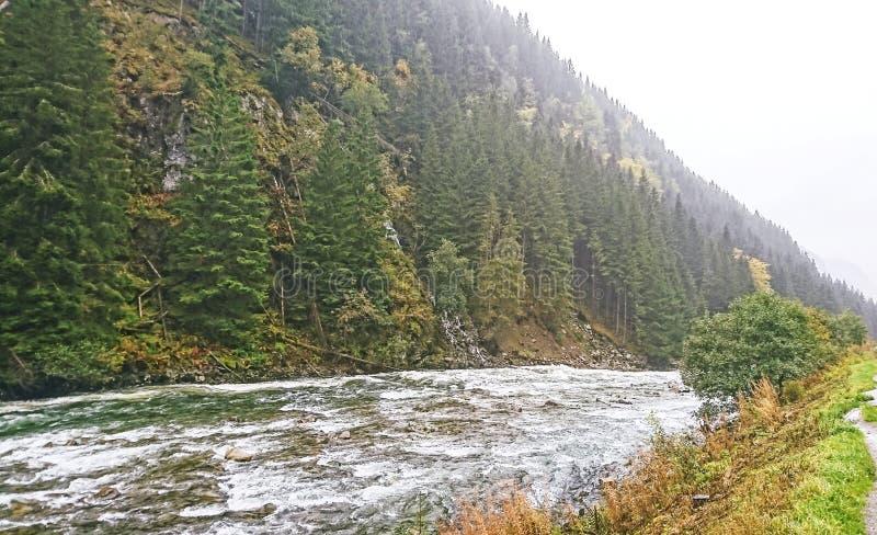 Vistas que sorprenden de la naturaleza con el fiordo, el bosque, el río de la montaña y las montañas Mañana brumosa La sensación  fotografía de archivo libre de regalías