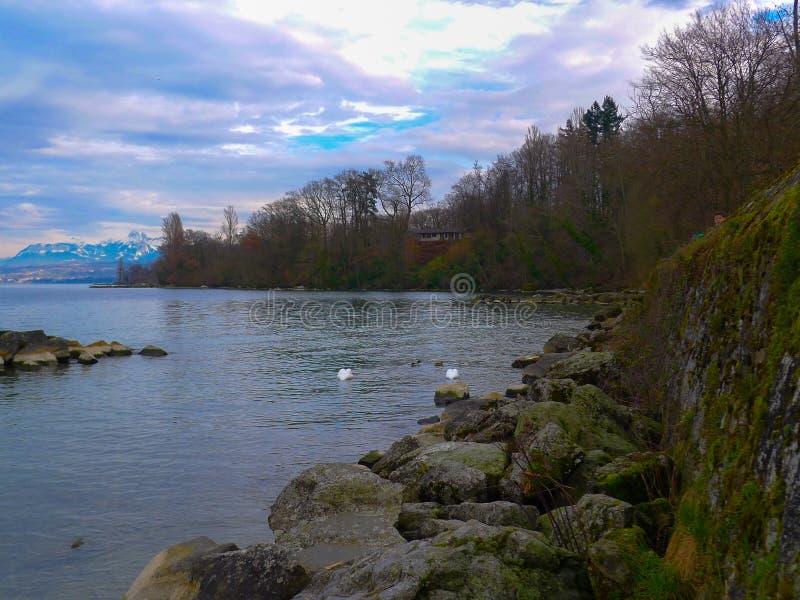 Viste del lago Lemano fotografia stock