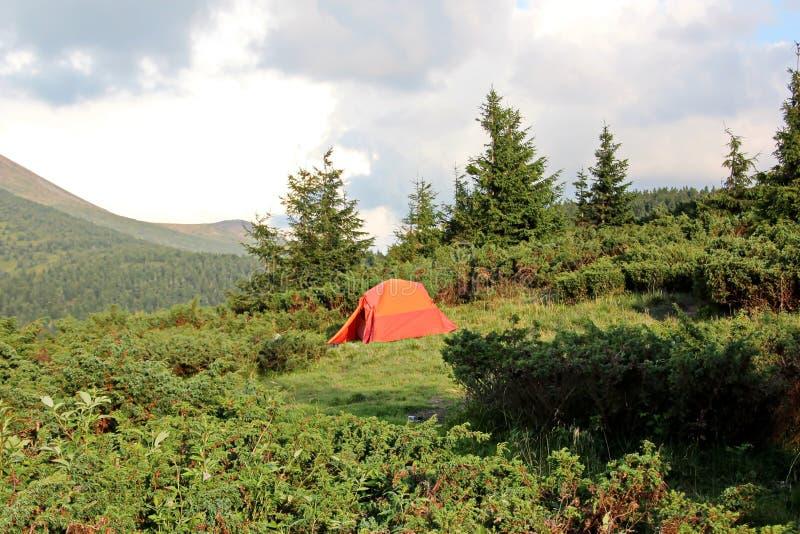 Viste del paesaggio delle montagne dei Carpathians, Ucraina immagine stock