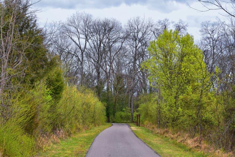 Viste della natura e delle vie lungo Shelby Bottoms Greenway e le tracce naturali della facciata del fiume Cumberland di area, ha fotografia stock