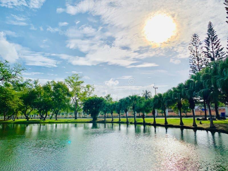Viste dello stagno nel parco alla provincia di Pattani del parco di Somdej Phra Srinakarin, Tailandia fotografia stock