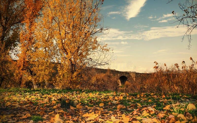 """Viste di autunno di Diyarbakir dal tacchino Vista """"del ponte storico di Devegecidi immagine stock libera da diritti"""