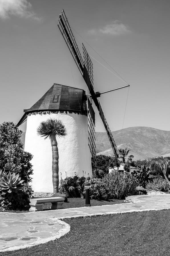 Viste di Fuerteventura e delle sue spiagge fotografie stock