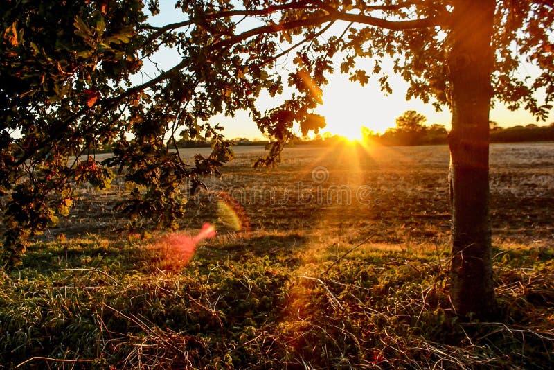 viste di tramonto fotografia stock libera da diritti