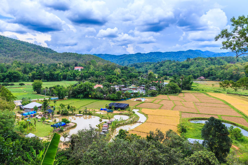 Viste e villaggio della risaia in Chiang Mai Asia Tailandia fotografia stock