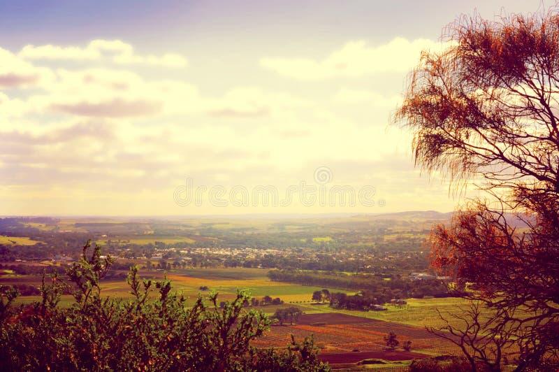 Viste sceniche di retro da tramonto stile del filtro che trascurano Barossa Valley fotografia stock libera da diritti