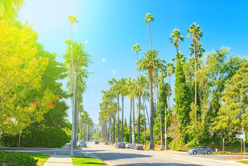 Viste urbane dell'area di Beverly Hills e degli edifici residenziali sul Hollywood Hills immagini stock libere da diritti