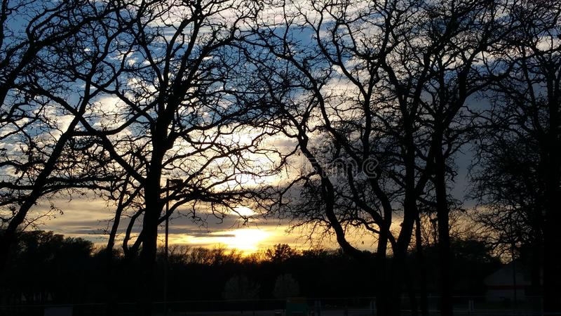 Visto attraverso gli alberi fotografia stock libera da diritti