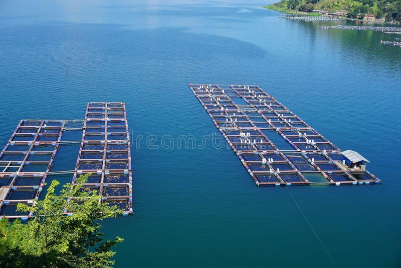 Visto dalla cima un gruppo di gabbie nette di galleggiamento sul lago Toba Questa gabbia è usata per la piscicoltura fotografia stock