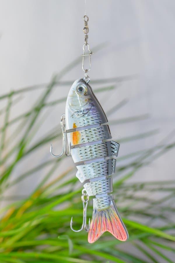 Vistuig en visserijlokmiddelen royalty-vrije stock afbeelding