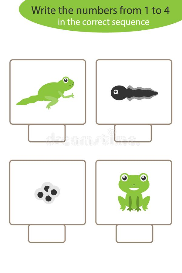 Visual game with frog life cycle for kids, educational task for the development of logical thinking, preschool worksheet activity stock illustration