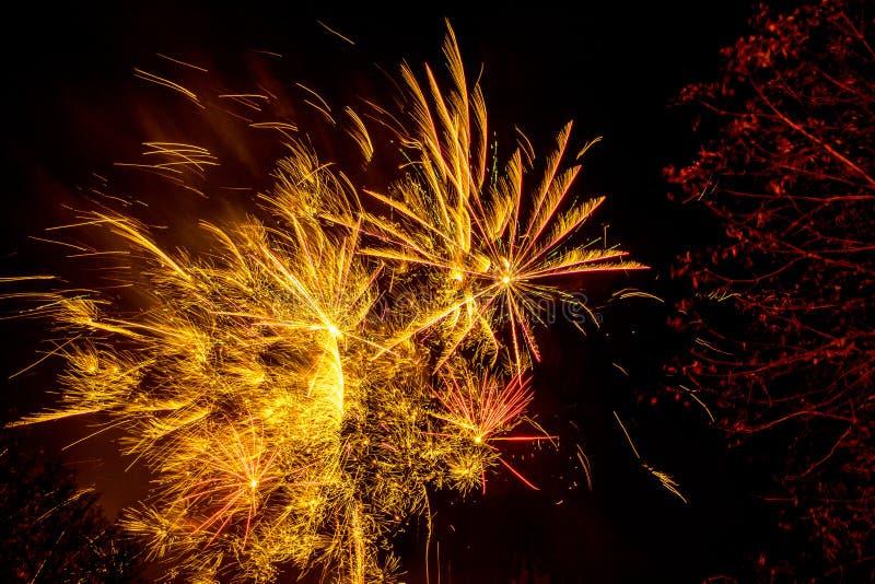 Visualización de los fuegos artificiales fotografía de archivo libre de regalías