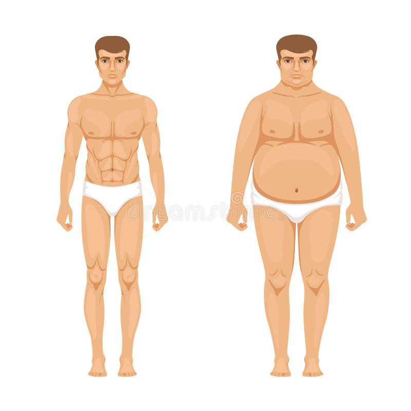 Visualization av viktförlust Muskulös och fet man Vektortecknad filmillustration av livsstilen stock illustrationer