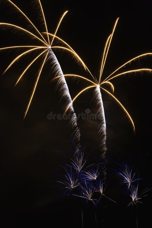 Visualizzazione dei fuochi d'artificio. fotografie stock libere da diritti