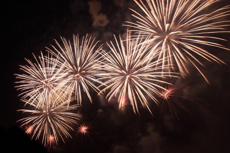 Visualizzazione dei fuochi d'artificio fotografia stock