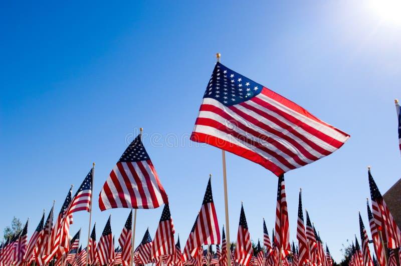 Visualizzazione della bandiera americana in onore del giorno di veterani fotografie stock libere da diritti