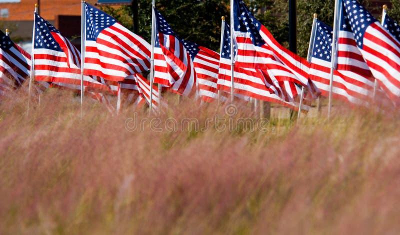 Visualizzazione della bandiera americana in onore del giorno di veterani immagini stock
