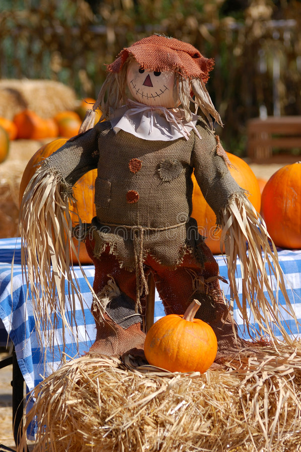 Visualizzazione di Halloween fotografie stock