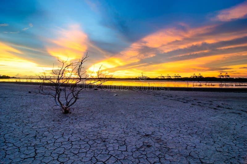 Visualizzazione di tramonto del paesaggio alla porta di Laemchabang del mare immagini stock libere da diritti