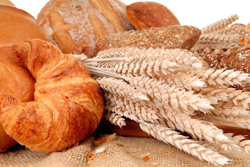 Visualizzazione varia del pane immagini stock
