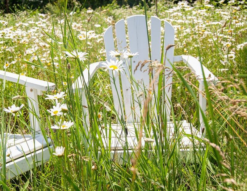 Vit Adirondack stol i tusenskönor fotografering för bildbyråer