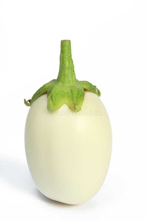 Vit aubergine (Solanummelongenaen) arkivfoton