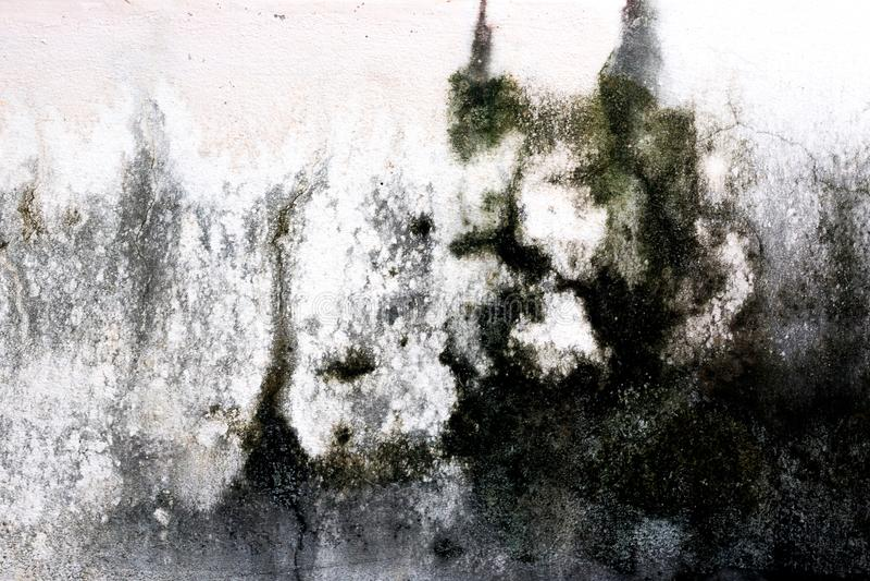 Vit bakgrund för textur för färgcementvägg arkivbild