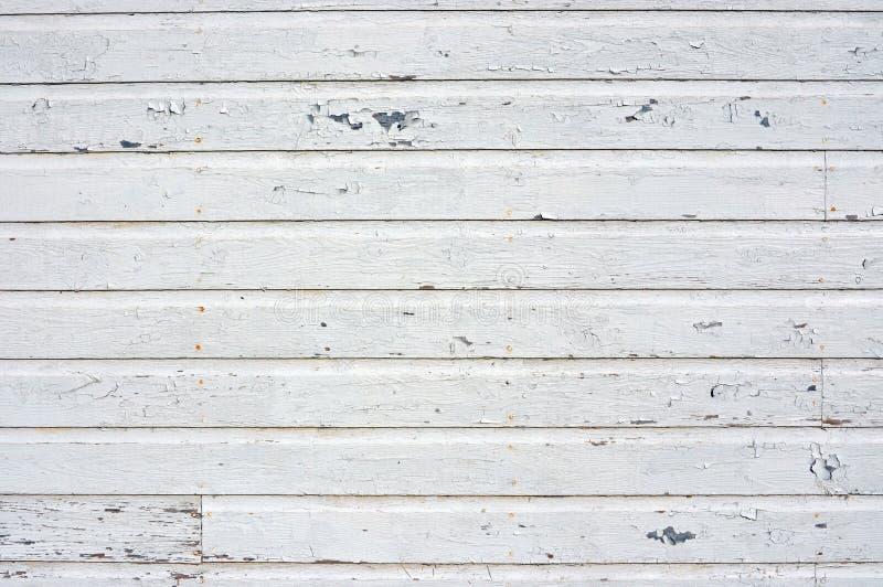 Vit bakgrund som skalar målarfärg arkivbild