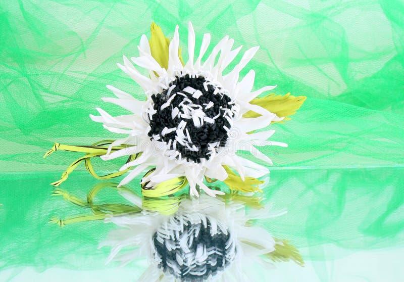 Vit blomma av foamiranaen på en grön bakgrundsnärbild royaltyfria bilder