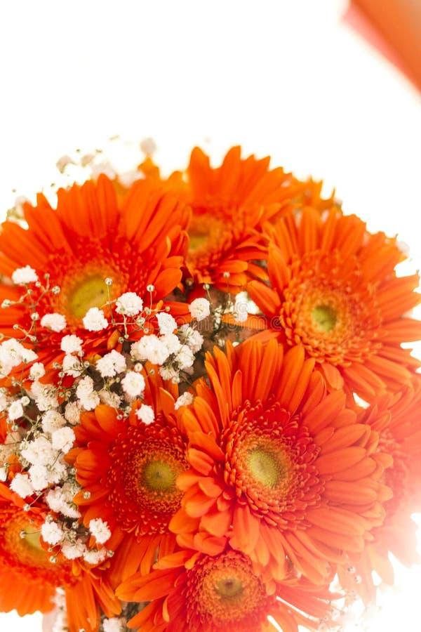 Vit bukett av blommabruden som är orange och arkivfoton