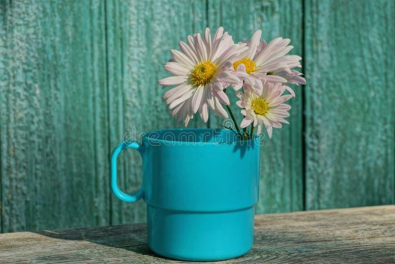 Vit bukett av tusenskönablommaknoppar i en blå kopp på ett grått träbräde fotografering för bildbyråer