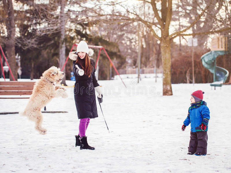 vit Caucasian moder med litet barnpojkeungen som spelar med den stora stora älsklings- hunden utomhus på vinterdag royaltyfri bild