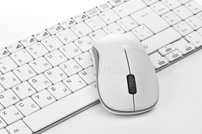 Vit datormus på tangentbordet fotografering för bildbyråer