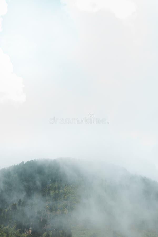 Vit dimma över grönt bergmaximum fotografering för bildbyråer