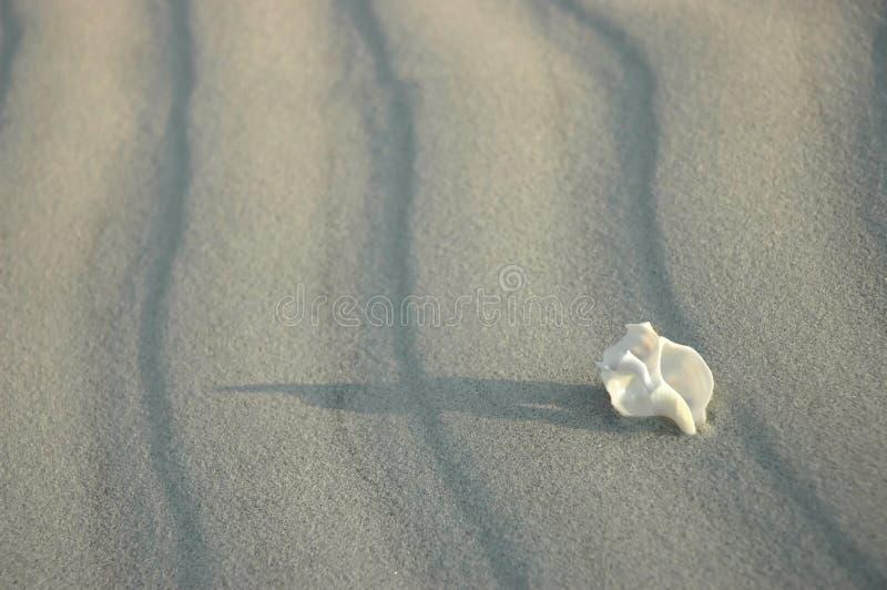 Vit ensamhet arkivfoton