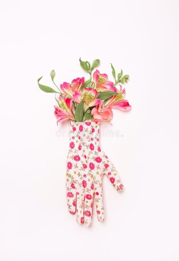 Vit för trädgård för irisblommatumvante handske dekorerad royaltyfria bilder
