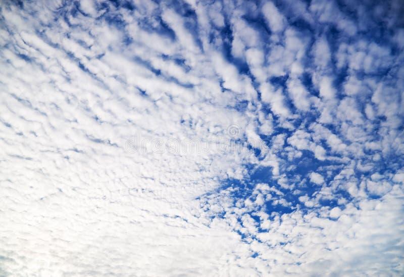 Vit fördunklar över blå himmel royaltyfria bilder