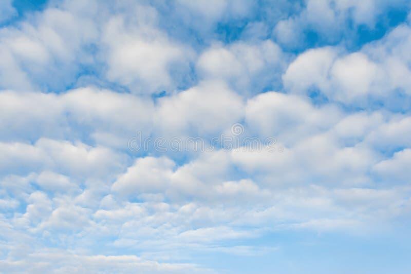 Vit fördunklar mot blå himmel, abstrakt bakgrund arkivbilder