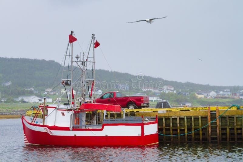 Vit fiskebåt royaltyfria bilder