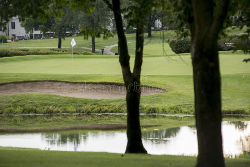 Vit flagga över frodig golfgräsplan till och med träd royaltyfri fotografi