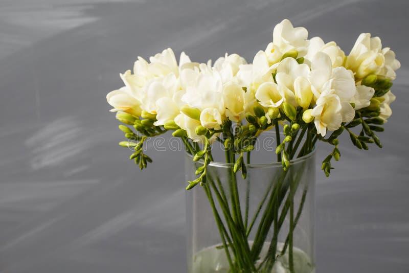Vit freesia blommar i dekorativ vas på en bakgrund av den gråa väggen arkivfoton