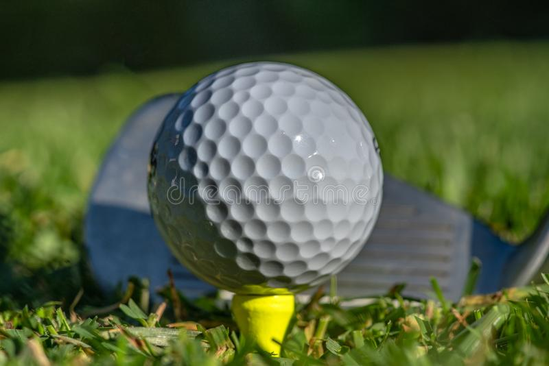 Vit golfboll teed upp på en gul utslagsplats royaltyfria bilder