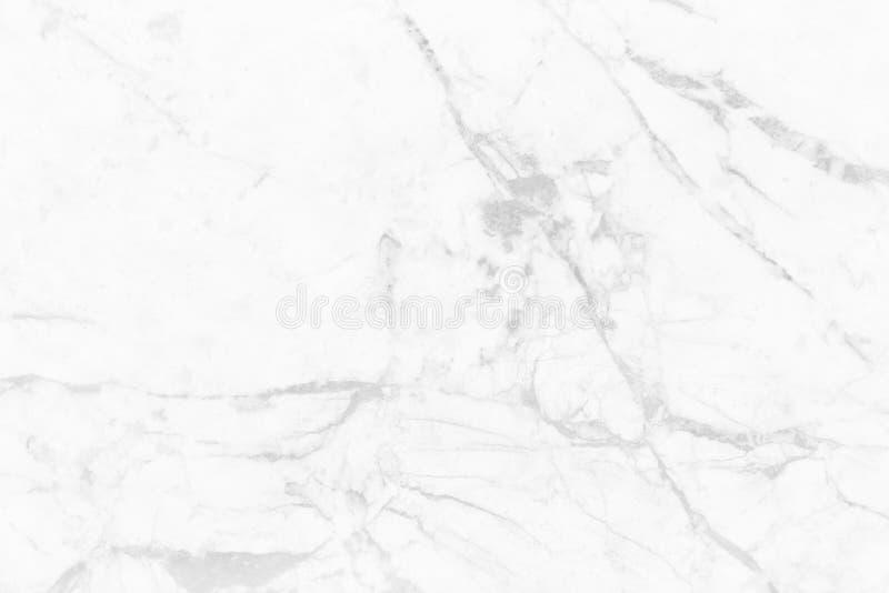 Vit grå färgmarmortextur med den naturliga modellen för bakgrunds- eller designtegelplattor hud och keramisk räknare royaltyfria bilder
