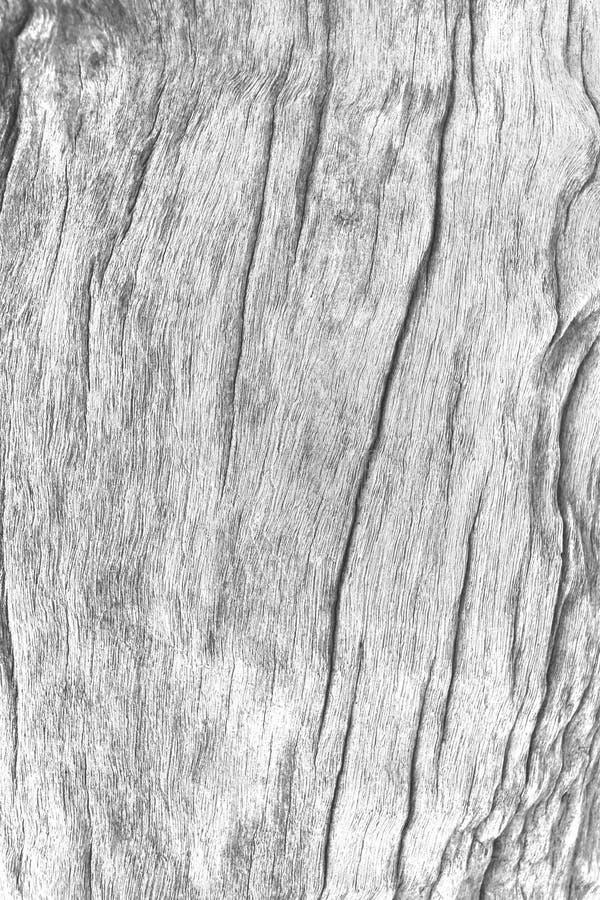 Vit grå wood textur arkivfoto