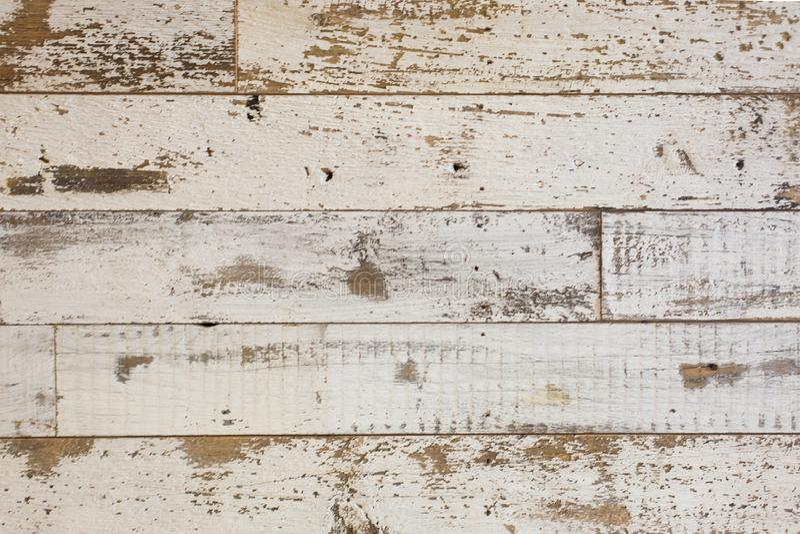 Vit/grå wood texturbakgrund med naturliga modeller Golv royaltyfria bilder