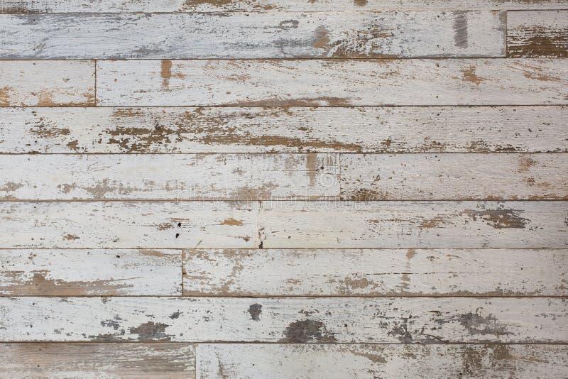 Vit/grå wood texturbakgrund med naturliga modeller Golv royaltyfria foton