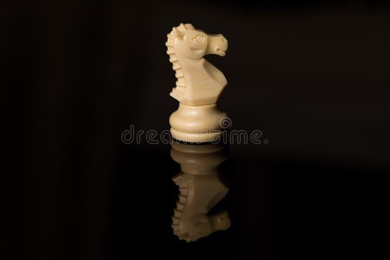 Vit häst för klassiskt schack på svart bräde, royaltyfria bilder