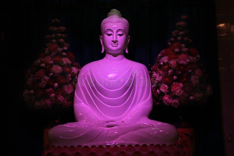 Vit Jade Buddha staty med purpurfärgat ljus arkivbild